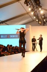 Bullet and Snowfox performing